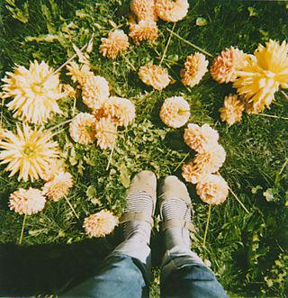 Dahlia-feet