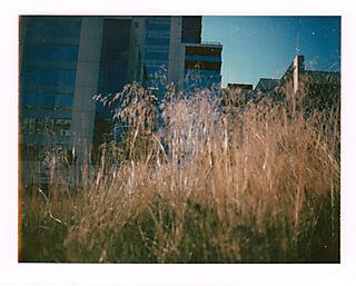Id-grass