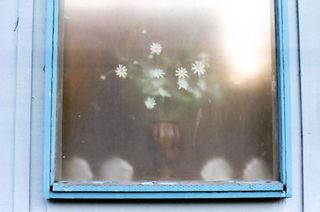 Flowersbehindwindow