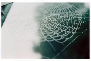 Webclose