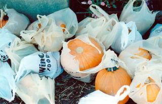 Pumpkinbag