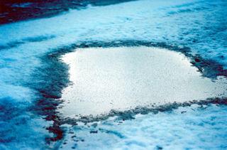 Snowfrozenpuddle