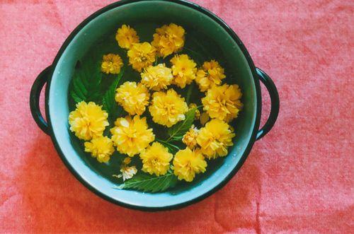 Flowerfriday2