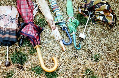 3umbrellas