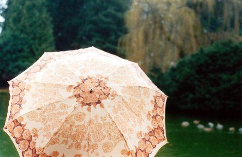 Ccumbrellafull