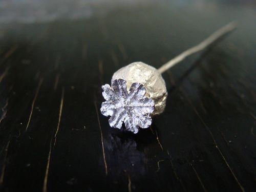 Manipoppypod