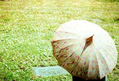 Undermyumbrella1